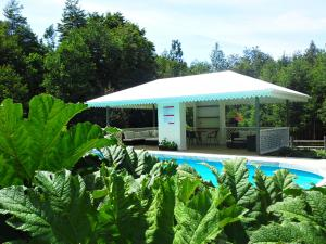 Hotel Salto del Carileufu, Hotely  Pucón - big - 217
