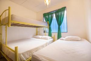 Bed in 4-Bed Mixed Dormitory Room with Share Bathroom