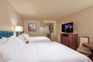 Studio room with King or Two Queen Beds