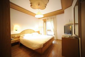 Hotel Vioz, Hotely  Peio Fonti - big - 4