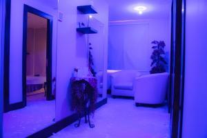 Madar Suites, Apartmanhotelek  Yanbu - big - 16