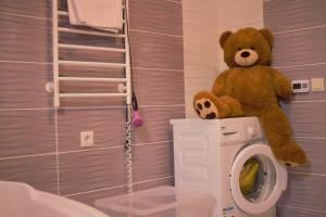 ????? Teddy