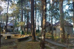 Mountain Resort, Khali Estate (1 of 9)