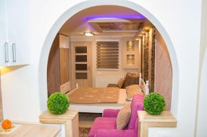Apartments Josipovic, Appartamenti  Zlatibor - big - 53