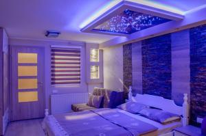 Apartments Josipovic, Appartamenti  Zlatibor - big - 54