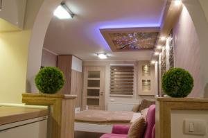 Apartments Josipovic, Appartamenti  Zlatibor - big - 55