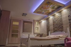 Apartments Josipovic, Appartamenti  Zlatibor - big - 60