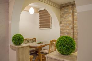 Apartments Josipovic, Appartamenti  Zlatibor - big - 67