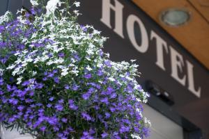 Hotel Hirschen - Grindelwald, Отели  Гриндельвальд - big - 100