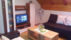 Apartments Smirnov, Appartamenti  Drežnik Grad - big - 25