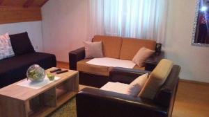 Apartments Smirnov, Appartamenti  Drežnik Grad - big - 26