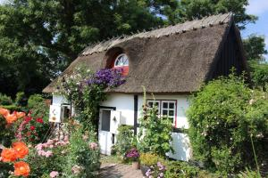 Travel back in time, Country houses  Nyord - big - 10