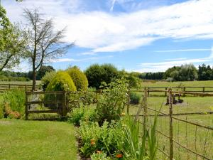 Coed-Y-Gelli Cottage, Case vacanze  Llanddewi Rhydderch - big - 11