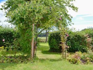 Coed-Y-Gelli Cottage, Case vacanze  Llanddewi Rhydderch - big - 13