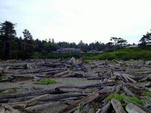 Kalaloch Lodge (5 of 35)