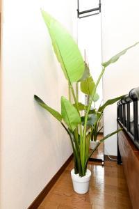Stylish room in downtown, Apartmanok  Tokió - big - 27