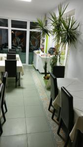 Pensiunea Sergiu & Geanina, Guest houses  Arad - big - 42