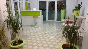 Pensiunea Sergiu & Geanina, Guest houses  Arad - big - 48