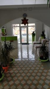 Pensiunea Sergiu & Geanina, Guest houses  Arad - big - 50