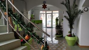 Pensiunea Sergiu & Geanina, Guest houses  Arad - big - 51