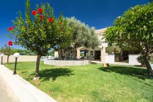 Mediterranean Studios Apartments, Apartmánové hotely  Kissamos - big - 30