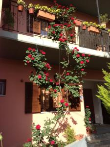 Artemis Apartments, Aparthotely  Konitsa - big - 16