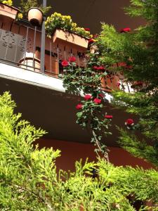 Artemis Apartments, Apartmánové hotely  Konitsa - big - 26