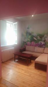Pink Flowers Apartment, Apartmanok  Szófia - big - 7