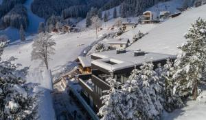 Sunny Ferienwohnungen Ski In - Ski Out, Apartmány  Zell am See - big - 62