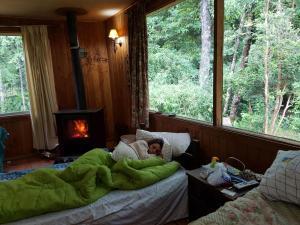 Parcela Didita, Case vacanze  Villarrica - big - 1