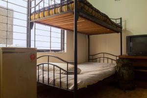 Japanese lodge hydrangea, Penziony  Dhaka - big - 3