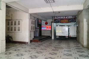 Japanese lodge hydrangea, Penziony  Dhaka - big - 21