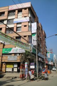 Japanese lodge hydrangea, Penziony  Dhaka - big - 18