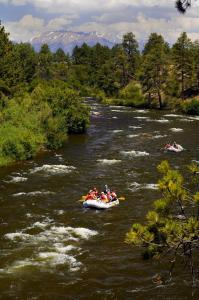 River Livin', Case vacanze  Salida - big - 8
