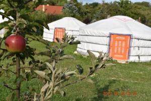 Bakonyi Camping