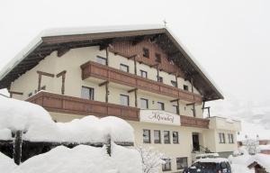 Appartement Alpenhof Wildschönau - Apartment - Niederau