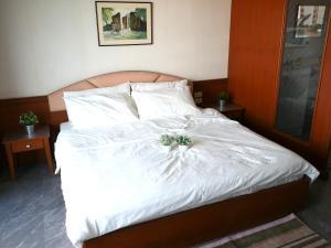 Baansuan (Kesini Ville), Appartamenti  Bangkok - big - 14