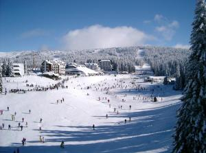 Konaci 2, Apartments  Kopaonik - big - 8