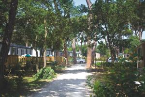 Park Albatros, Villaggi turistici  San Vincenzo - big - 101