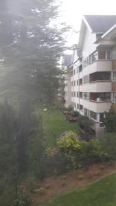 Porhtal, Appartamenti  Valdivia - big - 33