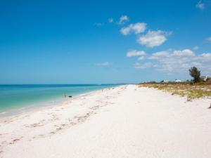 Gone Beaching 202, Apartmanok  Clearwater Beach - big - 4