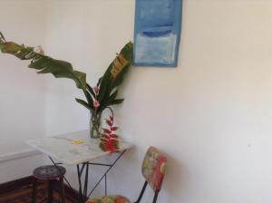 Red Arara, Panziók  Salvador - big - 15