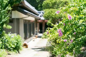 Village Ina, Prázdninové domy  Ina - big - 11