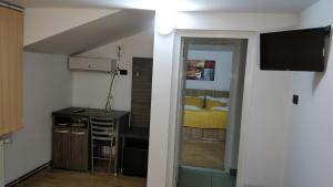 Pensiunea Sergiu & Geanina, Guest houses  Arad - big - 20