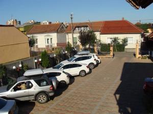 Pensiunea Sergiu & Geanina, Guest houses  Arad - big - 30