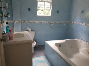 Chateau Bamboo, Priváty  Gros Islet - big - 5