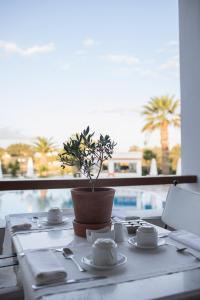 Porto Naxos, Hotely  Naxos Chora - big - 63