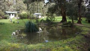Banksia Lake Cottages, Vidiecke domy  Lorne - big - 7