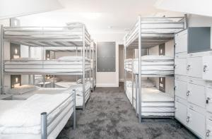 Bunk Bed in a 10 bed Female Dormitory Room