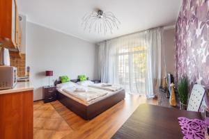Apartamenty Sun & Snow Promenada, Apartmány  Świnoujście - big - 169